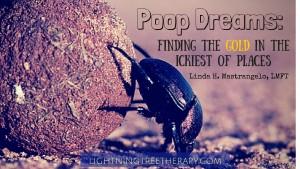 Poop Dreams